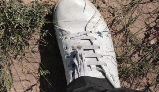 内モンゴルの人は靴が好き?!日本人より拘ってるかも
