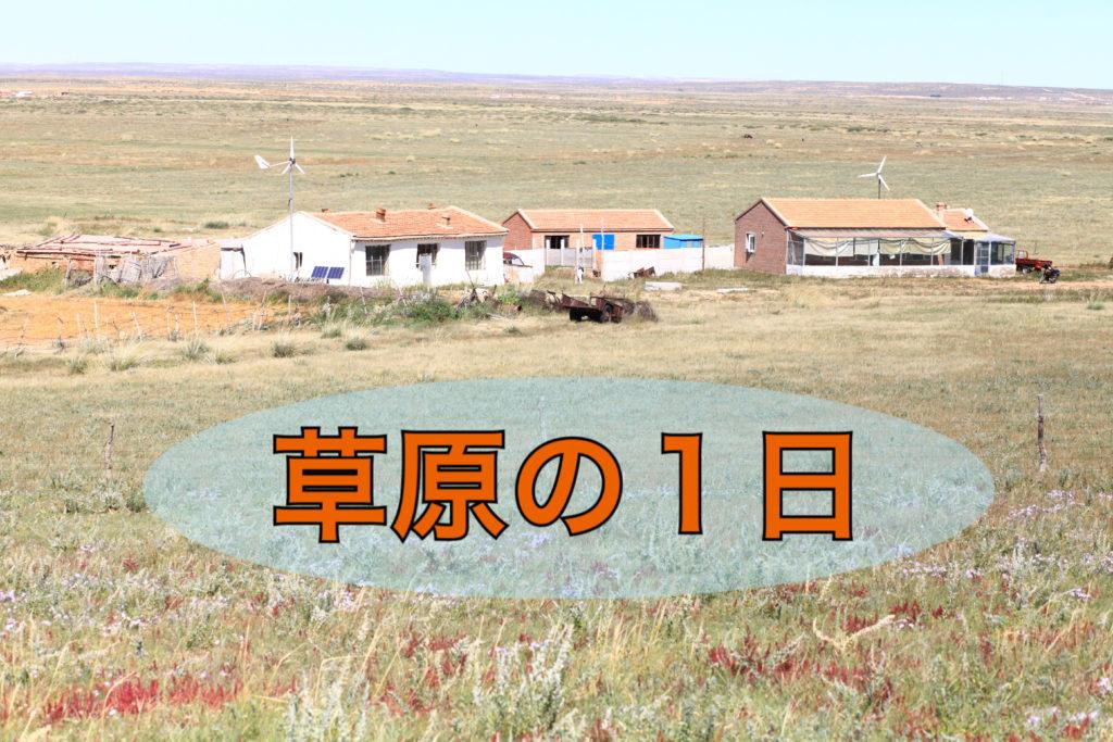 草原の1日