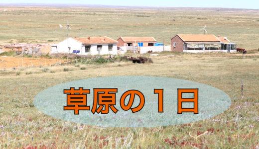 内モンゴルの草原での何気ない1日をご紹介します